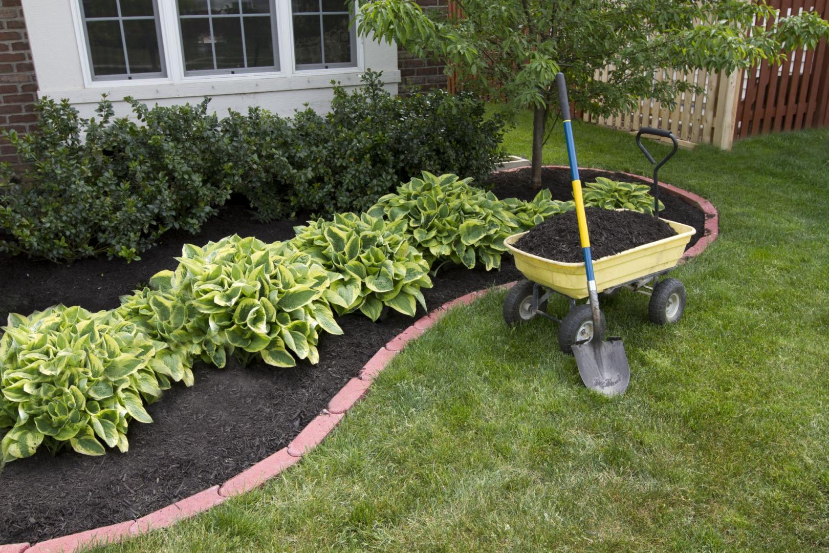 Entretien de jardin : les erreurs à éviter